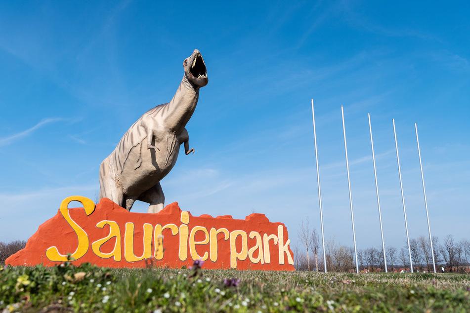 Der Dino-Park in Kleinwelka ist ein beliebtes Ausflugsziel für die ganze Familie.