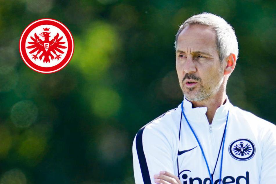 """Eintracht-Coach Hütter nach erstem Training: """"Eine Freude, auf dem Platz zu stehen"""""""