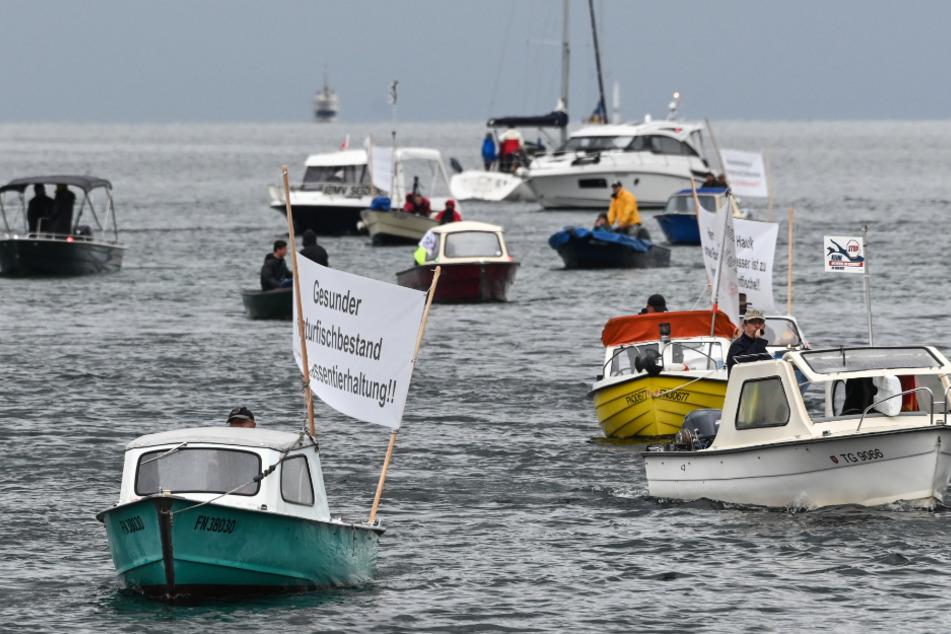 Darum protestieren die Fischer mit Schiffskorso auf dem Bodensee