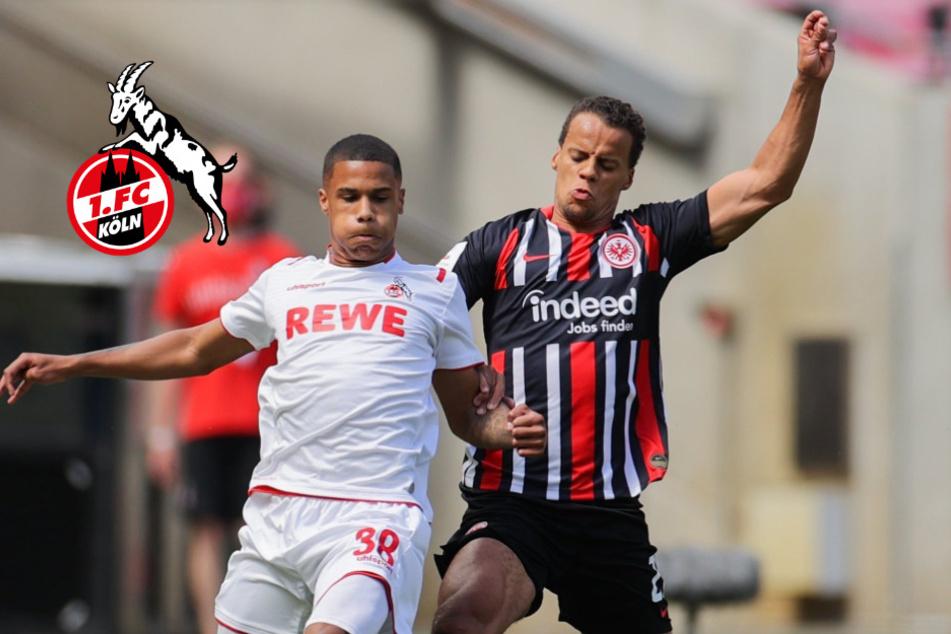 Gisdol setzt auf neue Flügelzange: Die Startelf des 1. FC Köln gegen Frankfurt