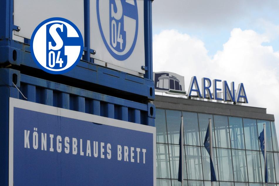 Schalke mit fettem Millionen-Minus! Düstere Perspektiven beim Bundesliga-Letzten