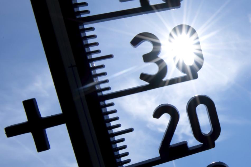 Über 30 Grad! Deutschland erlebt bislang wärmsten Tag des Jahres
