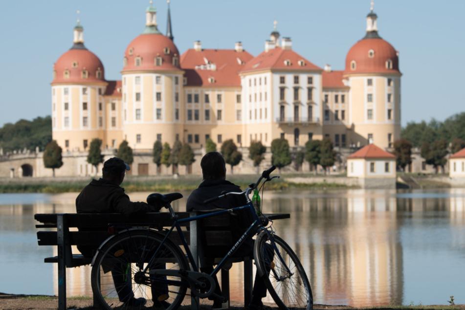 15 Kilometer Auslauf: Wo dürfen Dresdner jetzt noch hin?