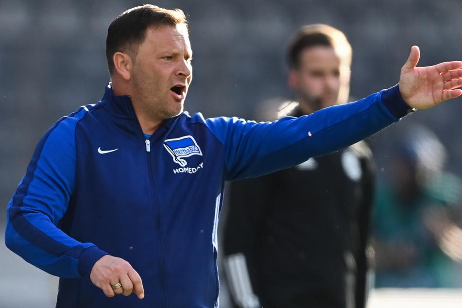 Pal Dardai hofft auf eine bessere Tagesform seiner Spieler, als noch gegen Arminia Bielefeld.
