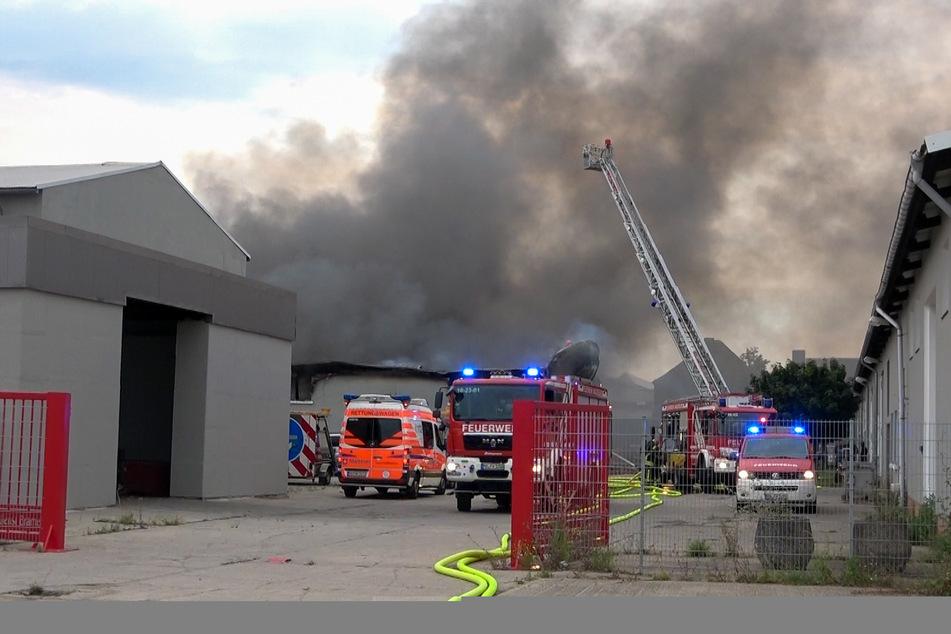 Feuer-Drama in Magdeburg: Lagerhallenbrand verursacht über 2 Millionen Euro Schaden