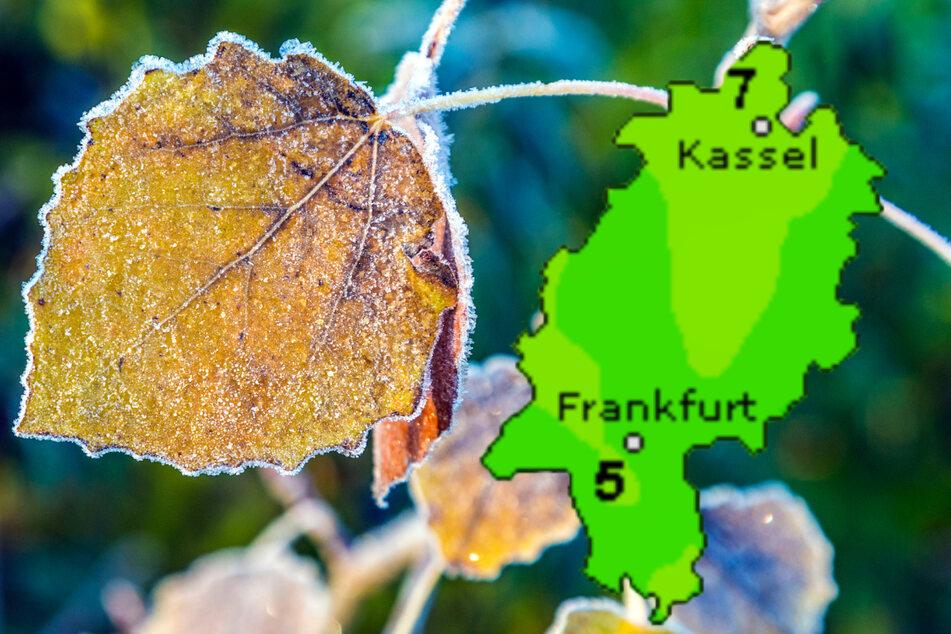 Nachtfrost kommt: Das Wetter in Frankfurt und Hessen kühlt ab