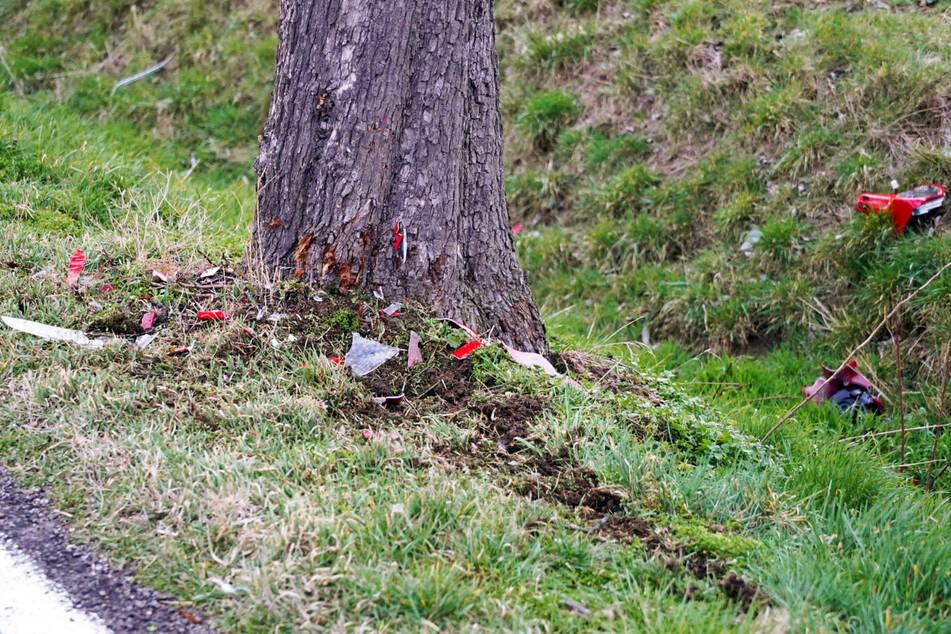 Der Schaden am Baum ist nur marginal. Dass es hier so einen tragischen Unfall gab, kann man später kaum mehr feststellen.
