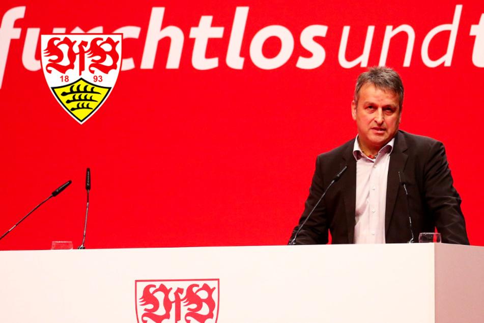 VfB-Mitglieder fordern Vereinsausschluss von Präsidiumsmitglied Mutschler