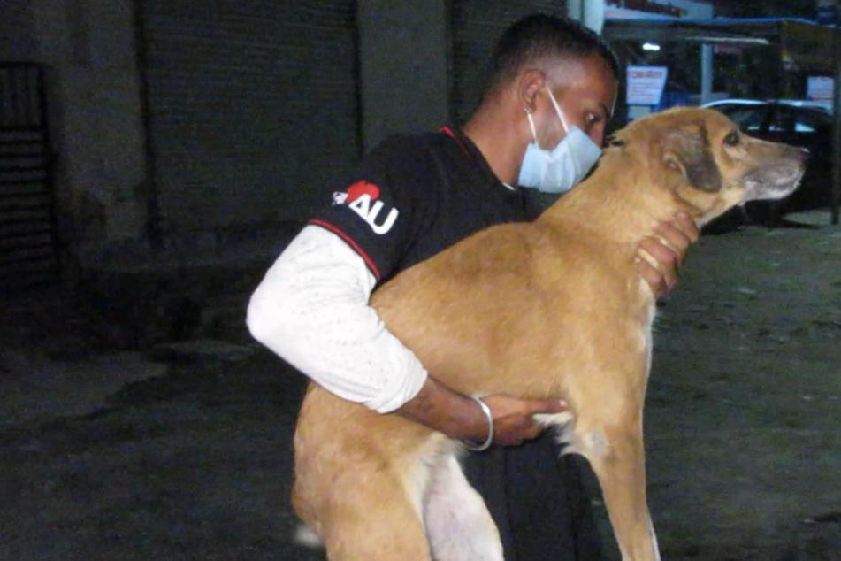 Hilfloser Hund ist überglücklich, als seine Retter kommen: Dann entdecken sie den bitteren Grund