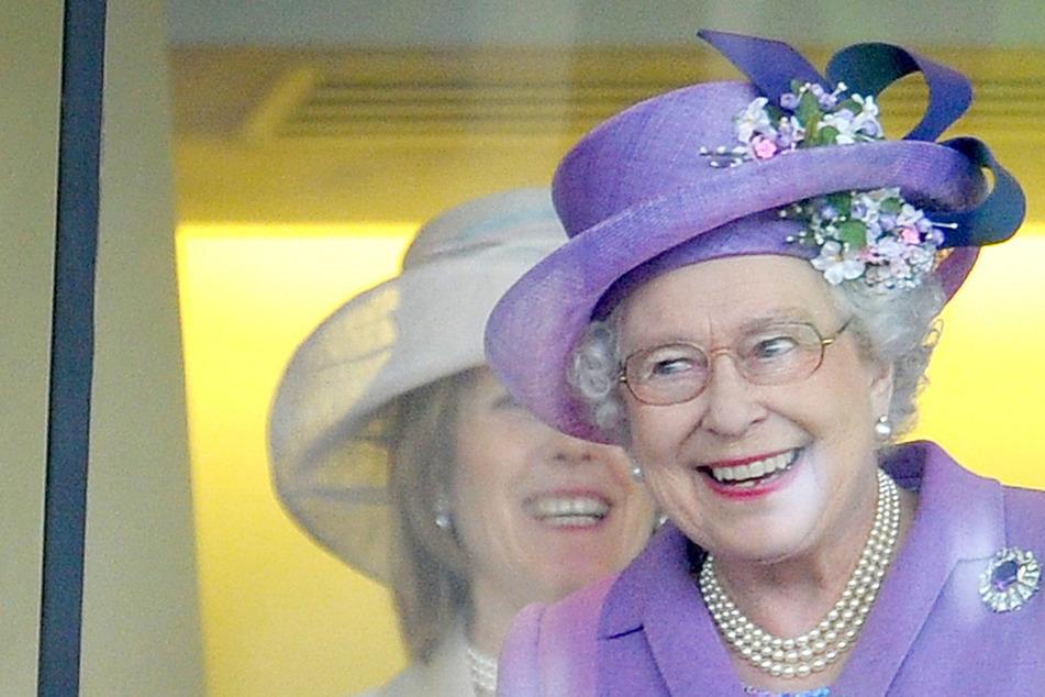Kühe wollen Freund der Queen zertrampeln, doch der hat Apfelwein im Rucksack