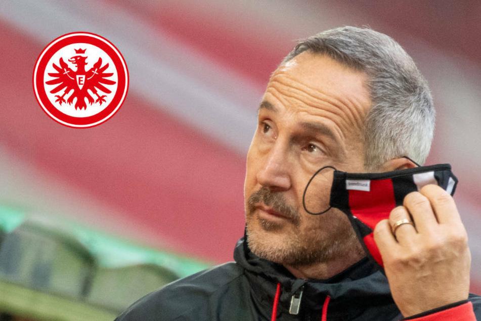 Adi Hütter von Dost-Abgang kalt erwischt, jetzt fordert Eintracht-Coach Verstärkung