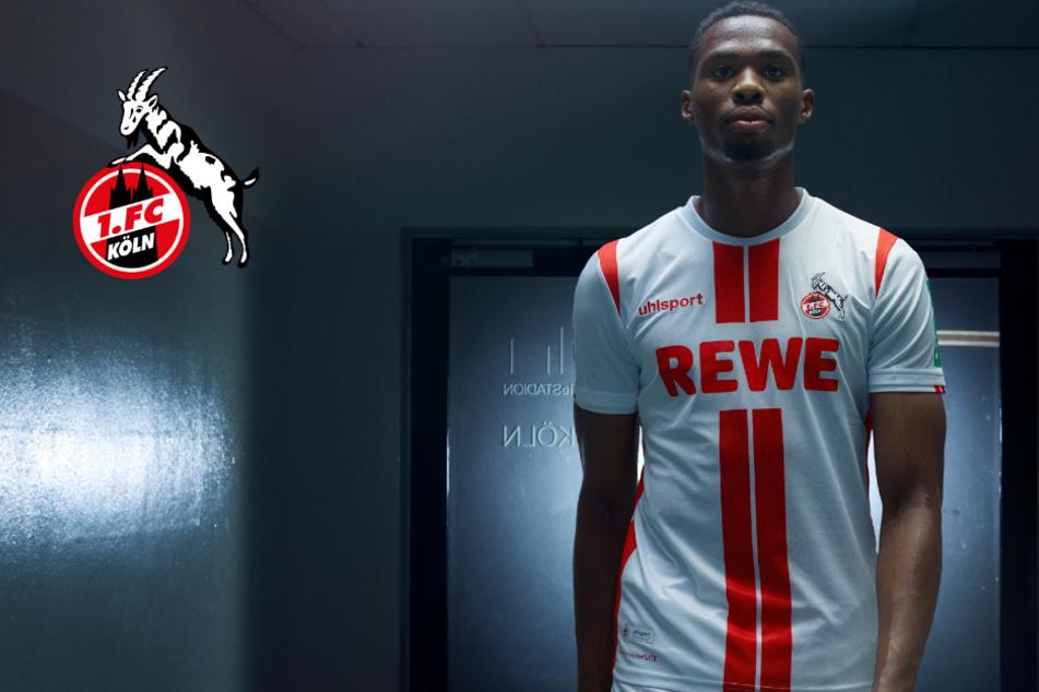 1. FC Köln: So sieht das neue Heimtrikot aus!