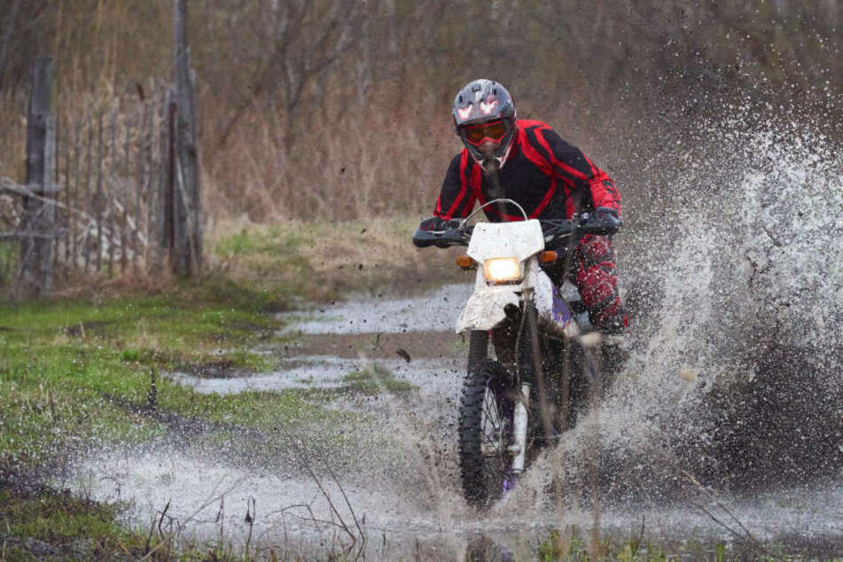 Sie nehmen keine Rücksicht! Biker sorgen in sächsischem Wald für Ärger