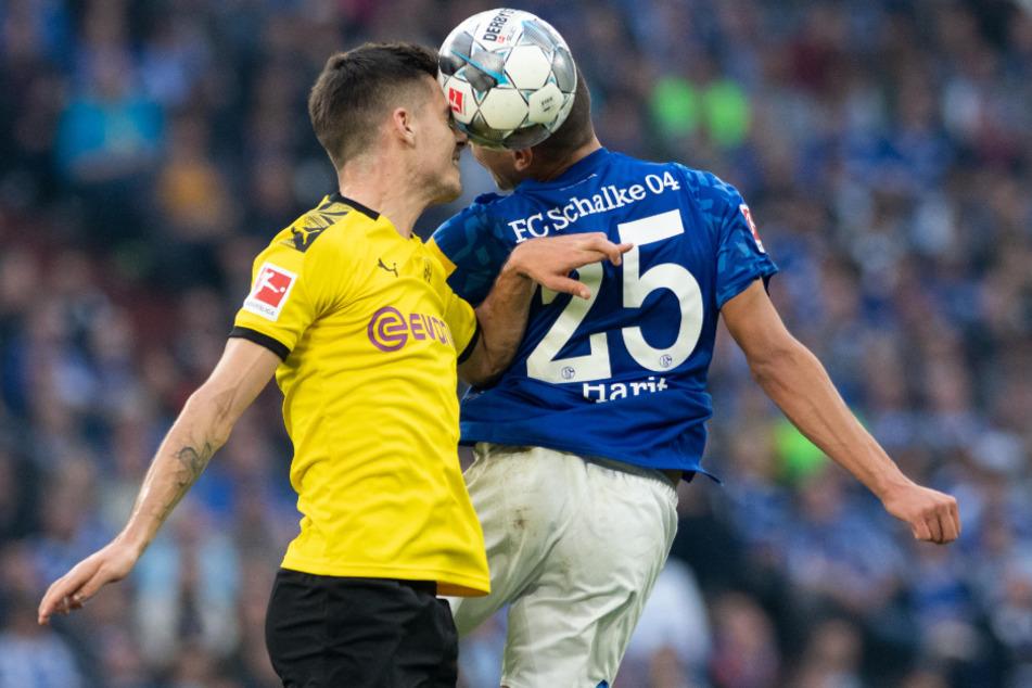 Am Wochenende kommt es zu Revierderby zwischen Borussia Dortmund und dem FC Schalke 04.