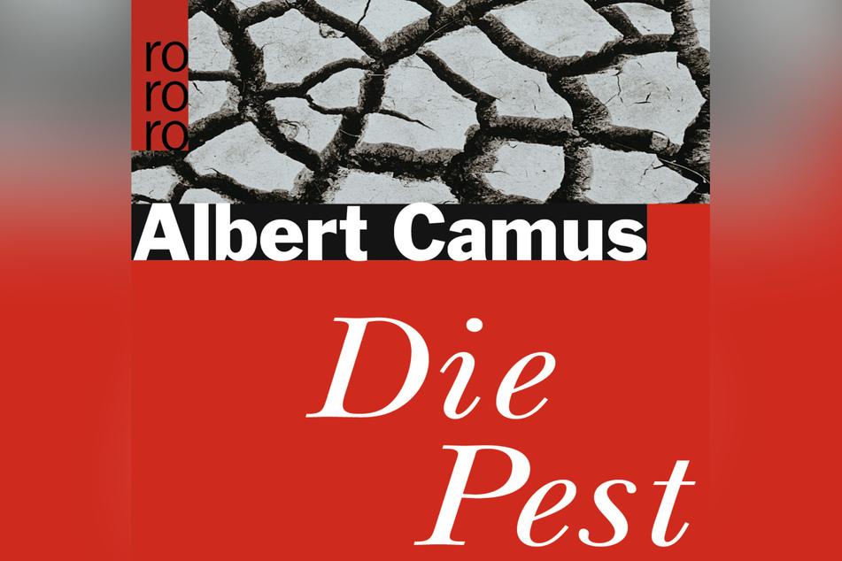 """Das Buch: """"Die Pest"""", Rowohlt, 12 Euro"""