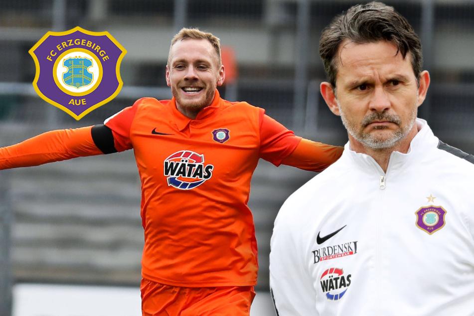 Aue-Trainer Schuster fordert, Stürmer liefert: Zolinski lässt den Knoten platzen!