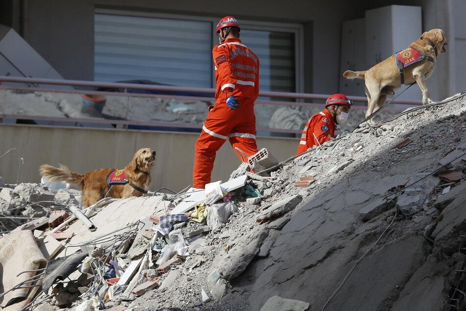 Rettungskräfte suchen mit Spürhunden in den Trümmern eines eingestürzten Gebäudes nach Überlebenden. Ein starkes Erdbeben in der Ägäis hat am 30.10.2020 in der Westtürkei und auf den griechischen Inseln für große Zerstörung gesorgt.