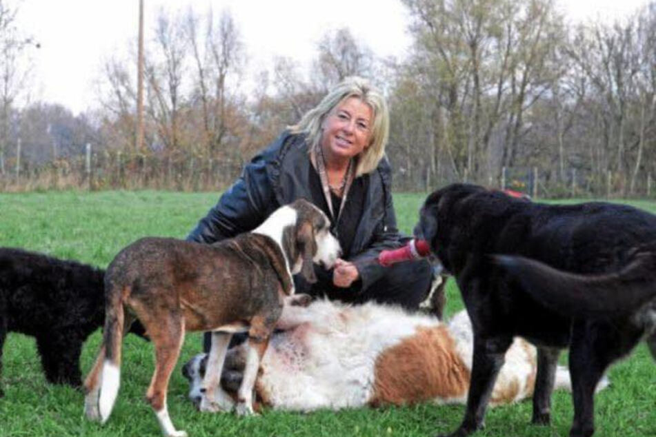 Hundehospiz-Gründerin Petra Brück kümmert sich um alte und kranke Vierbeiner.