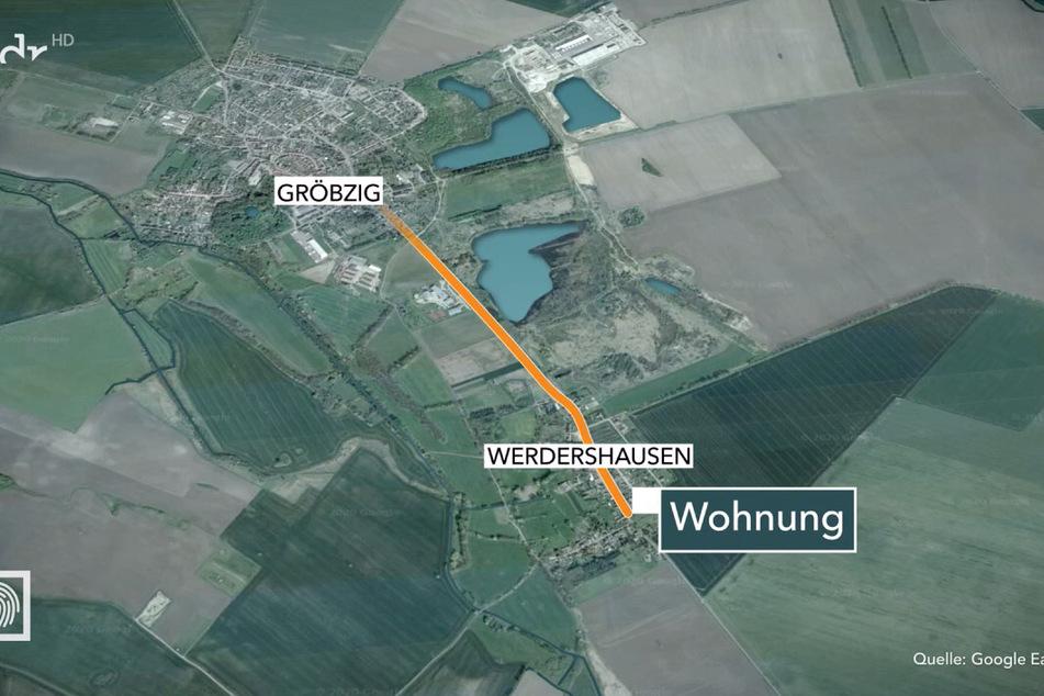 Herberts Fährte führte bis ins Zentrum des benachbarten Gröbzig.