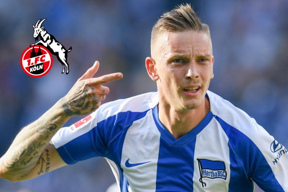 Transfer-Ticker für den 1. FC Köln: Sechs Neue kamen, 16 Spieler gingen