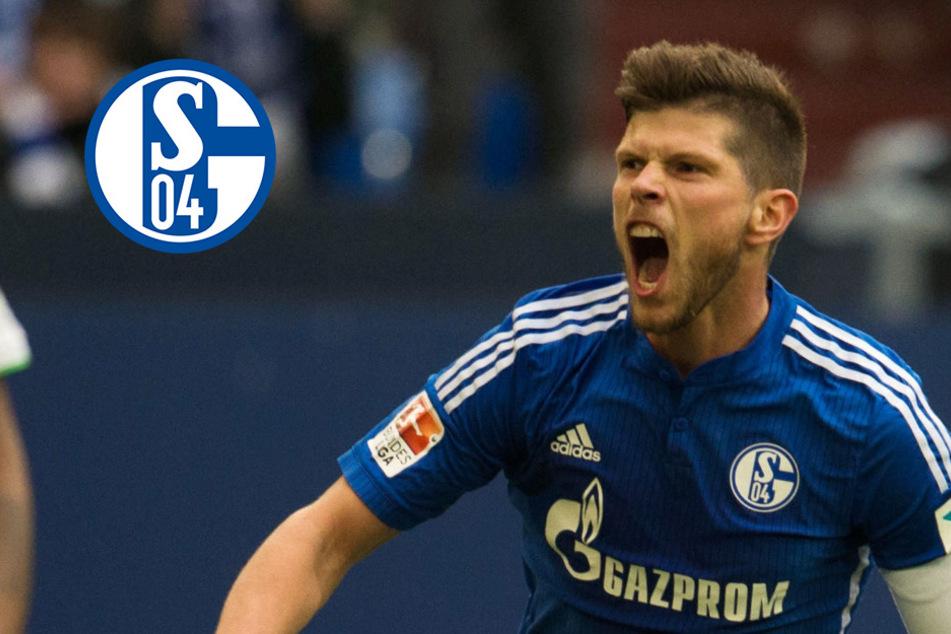 Schalke-Hammer: Huntelaar vor Comeback bei Königsblau!