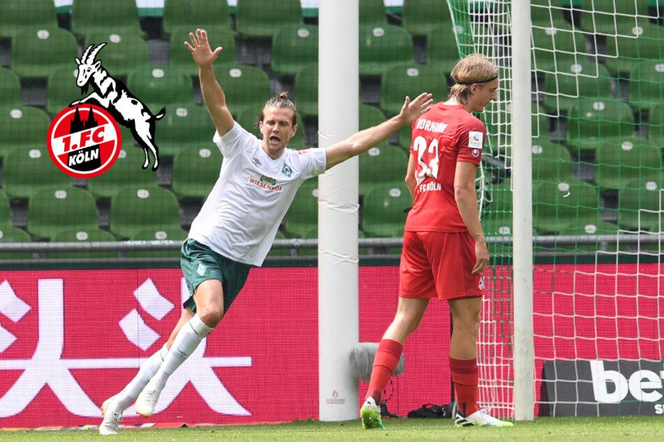 Debakel zum Saisonabschluss: 1. FC Köln schenkt Bremen die Relegation