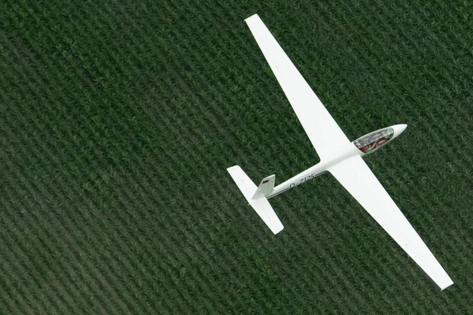 Segelflugzeug stürzt bei Landeanflug in Waldstück: Beide Insassen verletzt