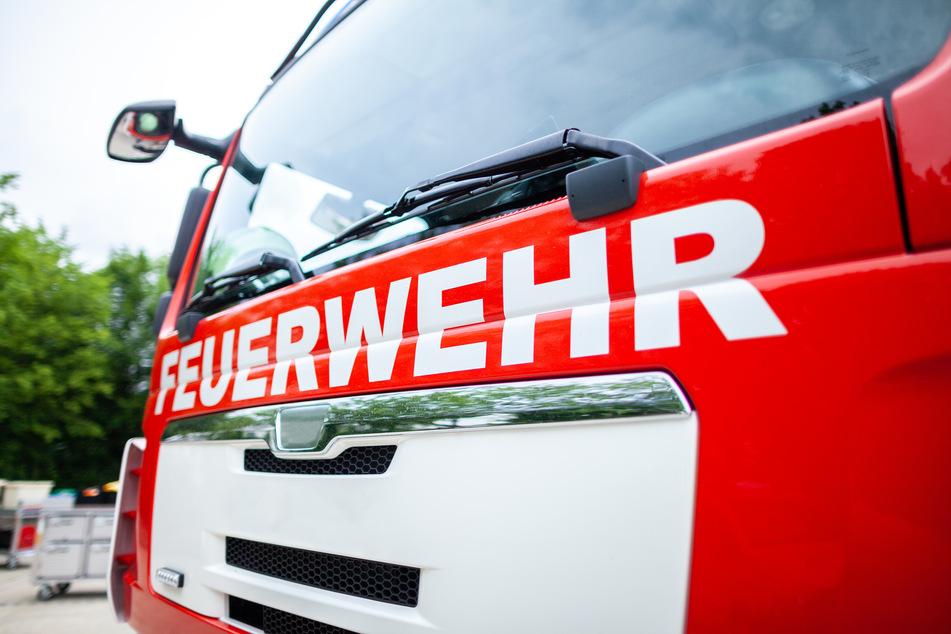 Neun Verletzte nach Brand in Altmetall-Betrieb: Einsatzkräfte von Störern behindert