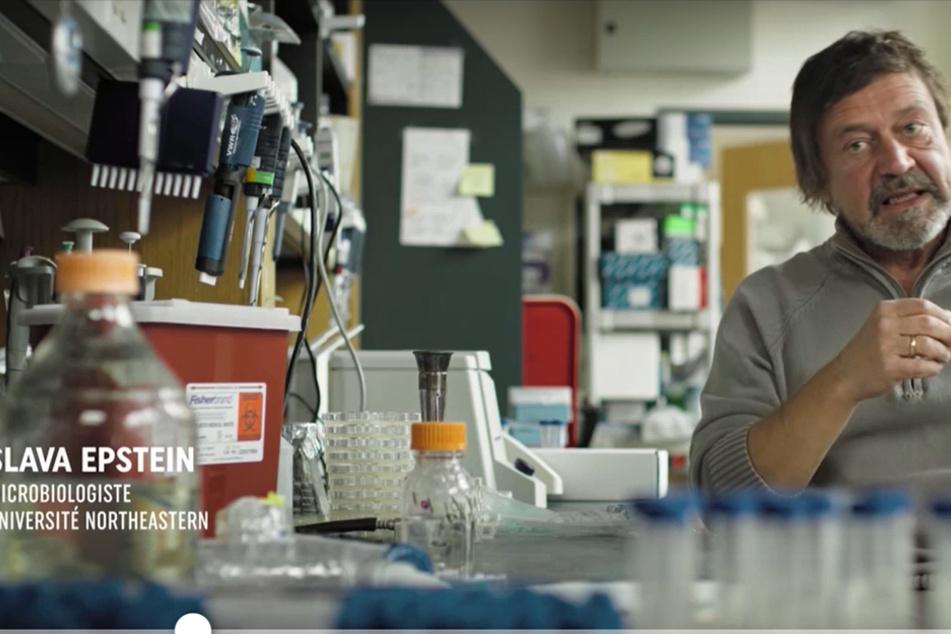 """""""Ohne das Finden neuer Gegenmittel löschen Bakterien das Leben höherer Lebewesen aus"""", ist sich Wissenschaftler Slava Epstein sicher."""