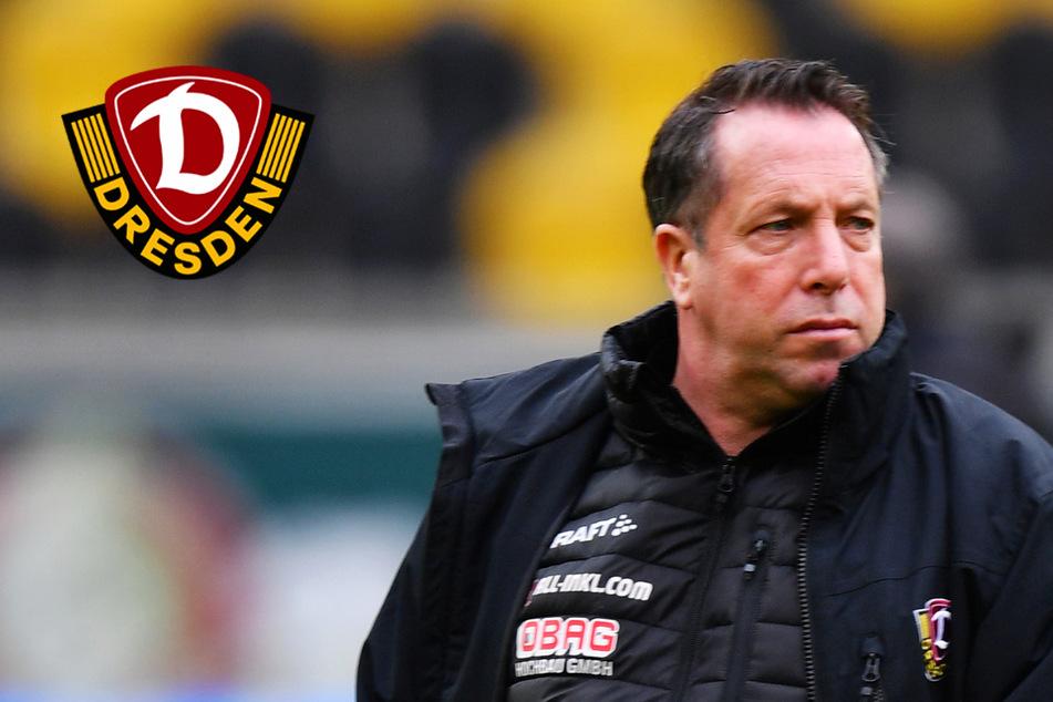 """Euphorie bei Dynamo-Coach Kauczinski? Nein! """"Müssen auf dem Boden bleiben"""""""