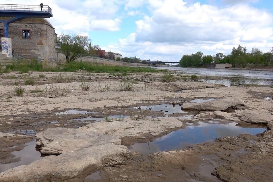 Elbe trocknet immer weiter aus