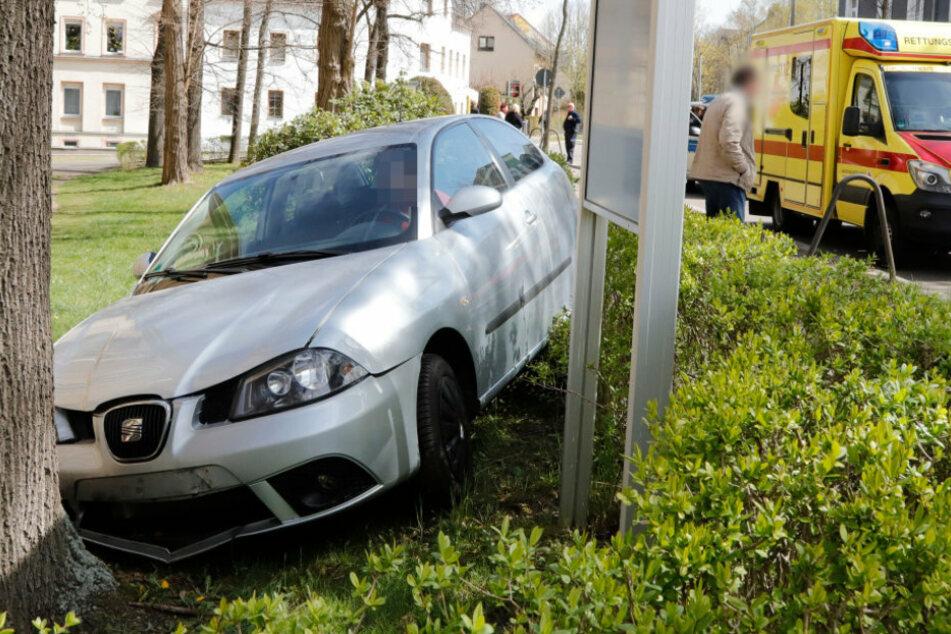 Chemnitz: Auto kracht durch Hecke und landet an Baum