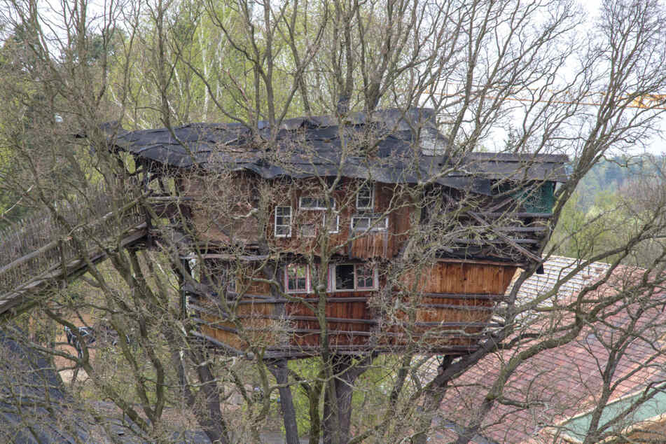 Na, das ist doch mal ein Baumhaus.