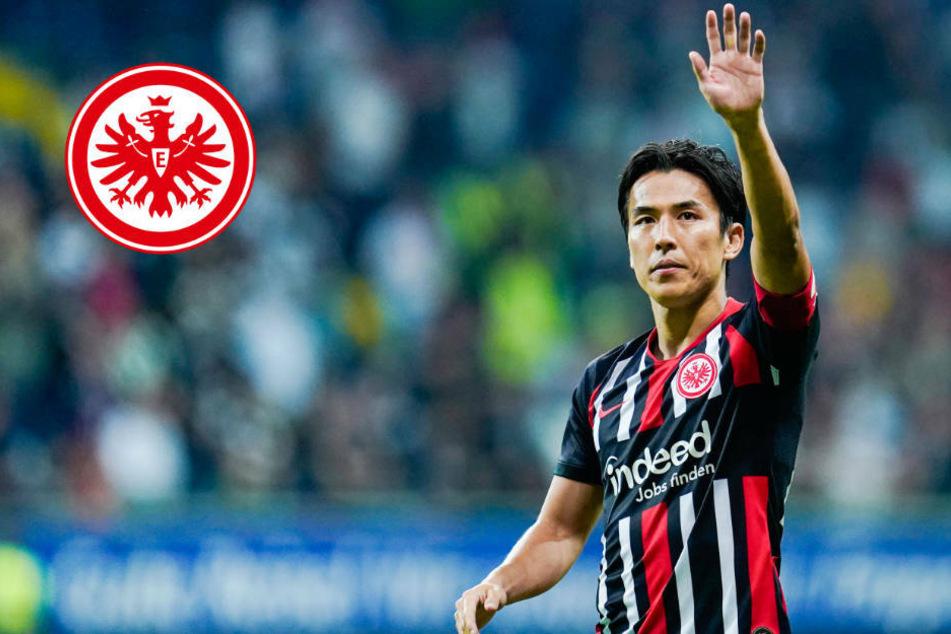 """""""Hase"""" bleibt Adler-Träger: Routinier verlängert mit Eintracht Frankfurt"""