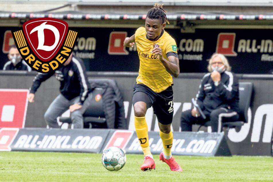 Donyoh, Taferner & Co.: Erste Personal-Entscheidungen bei Dynamo gefallen!