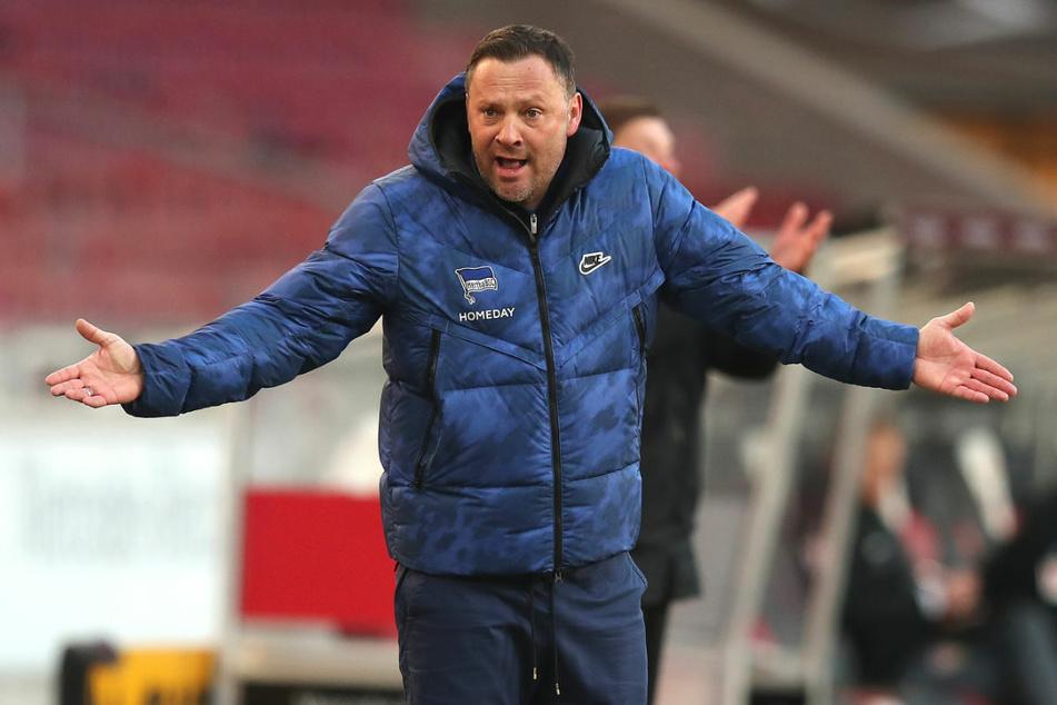 In einem Interview bezog Coach Pal Dardai (44) Stellung zu den Fehlern, die seiner Meinung nach in den vergangenen Monaten von Hertha BSC begangen wurden.