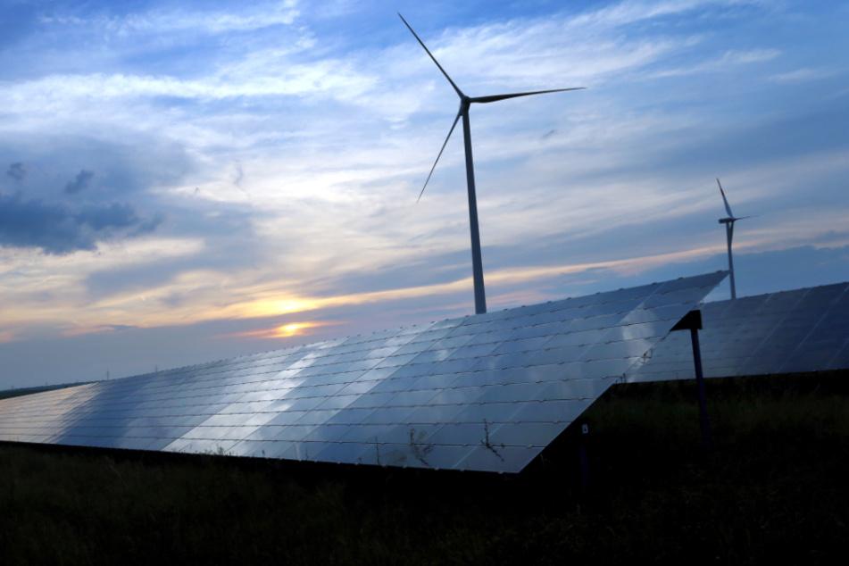 Tempolimits und Windkraft: Bund Naturschutz mit klaren Klimaschutz-Forderungen