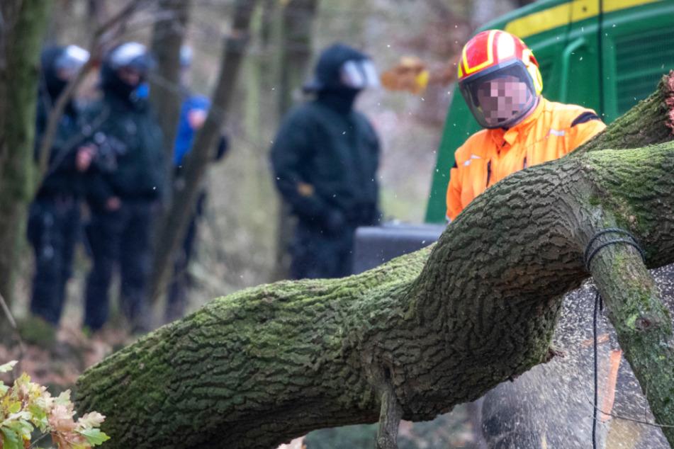 Im Dannenröder Forst haben die Vorbereitungen für die Rodung am Donnerstag begonnen.