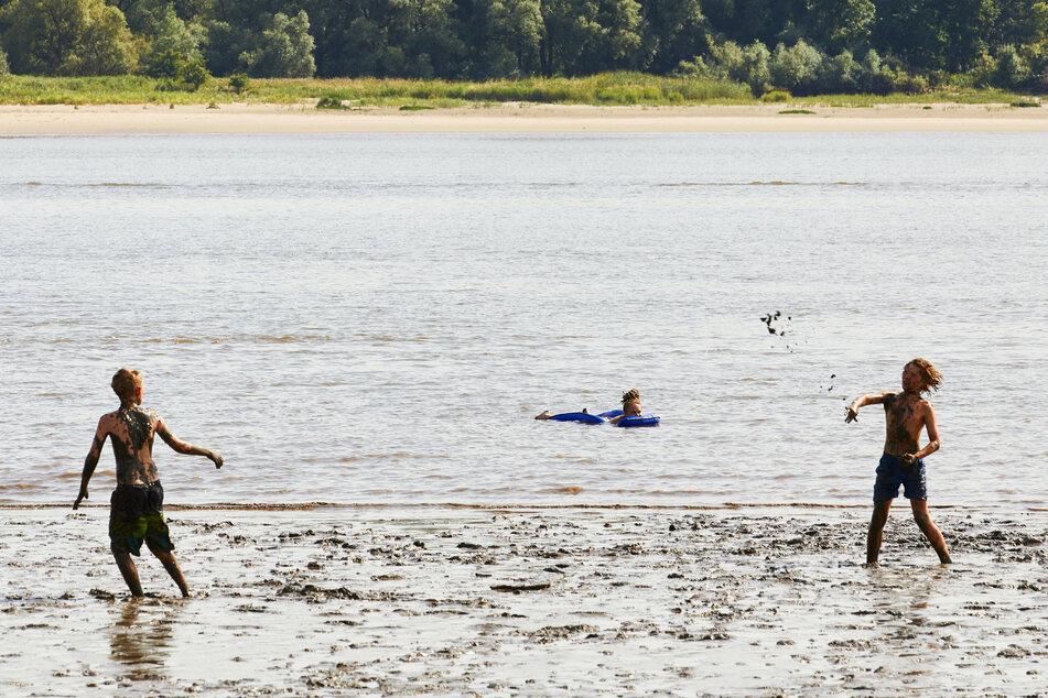 Kinder spielen in der Elbe am Falkensteiner Ufer.