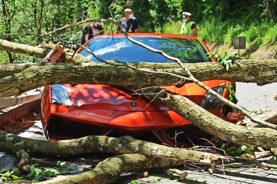 Das Fahrzeug wurde an Motorhaube und Kotflügel beschädigt.