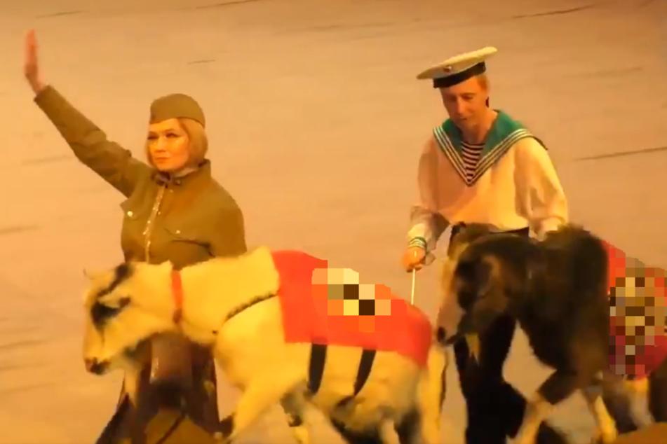 Tiere mit Hakenkreuzen: Bizarrer Nazi-Zirkus sorgt für Entsetzen