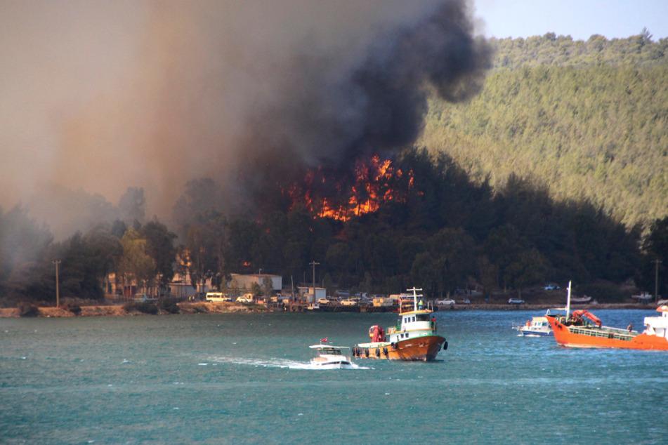 Rauch und Flammen steigen aus einem Waldgebiet in der Nähe eines Wohngebiets in der ägäischen Küstenstadt Bodrum auf.