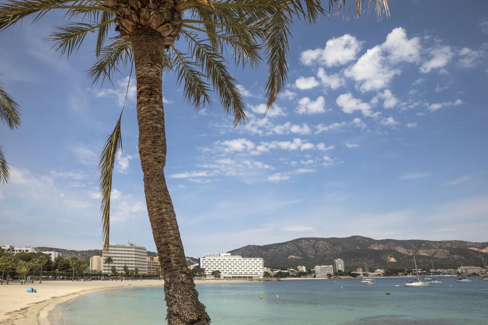 Strand, Sonne und frische Luft in Mallorca! Was Reisende im beliebten Urlaubsort erwartet, verrät ein neues Tool auf den ersten Blick.