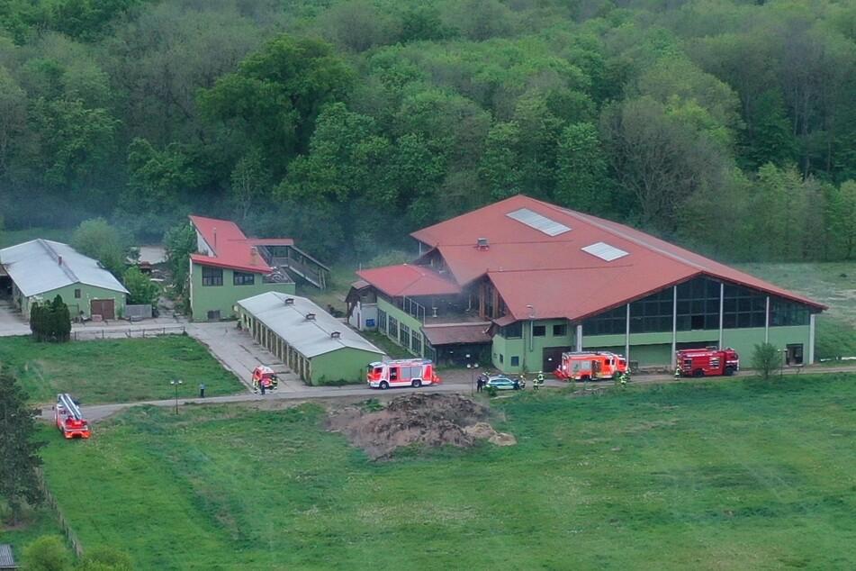 Der ehemalige Pferdehof war schon im Februar Ziel von Brandstiftern.