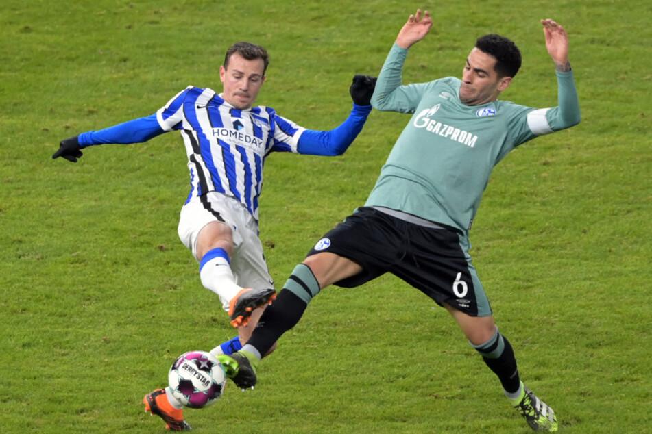 Herthas Vladimir Darida (l.) im Zweikampf mit Omar Mascarell von Schalke.