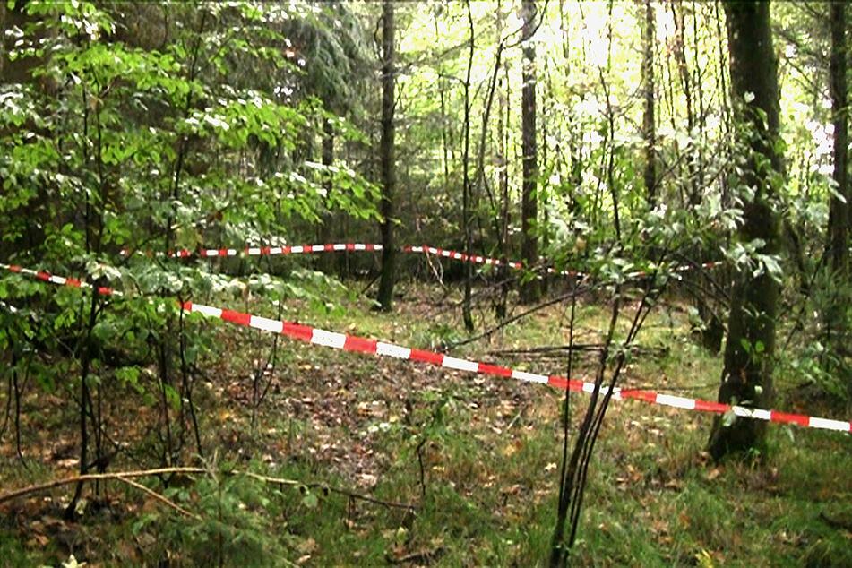 Pilzsammler fanden ihr Skelett: Wurde Maria Baumer von ihrem Verlobten ermordet?