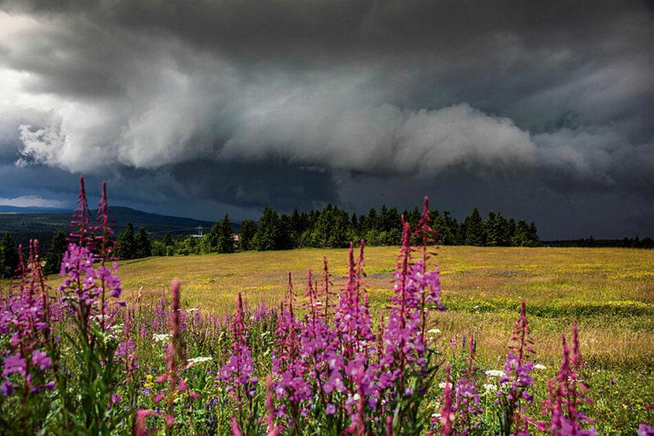 Am Wochenende ziehen dunkle Wolken über Sachsen auf.