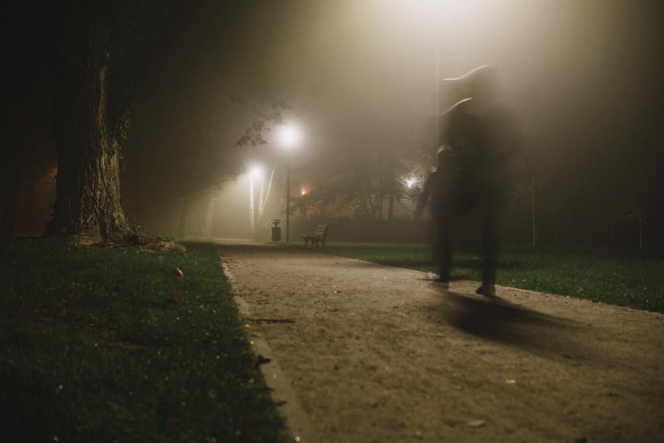 Eine 56-Jährige wurde nachts in einem Hamburger Park überfallen. (Symbolbild)