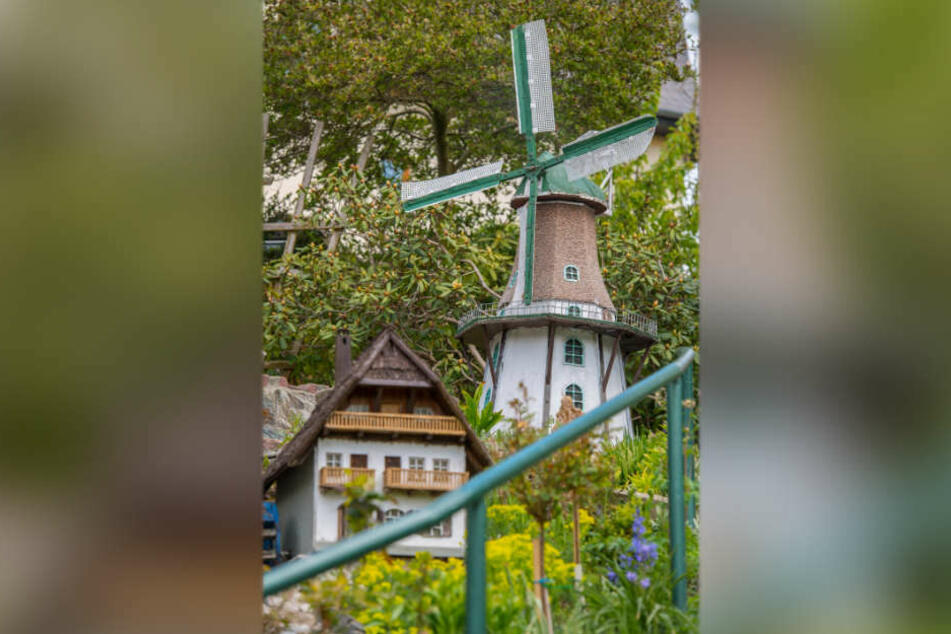 Windmühlen haben es dem Rentner besonders angetan - das ist die Windmühle von Potsdam.