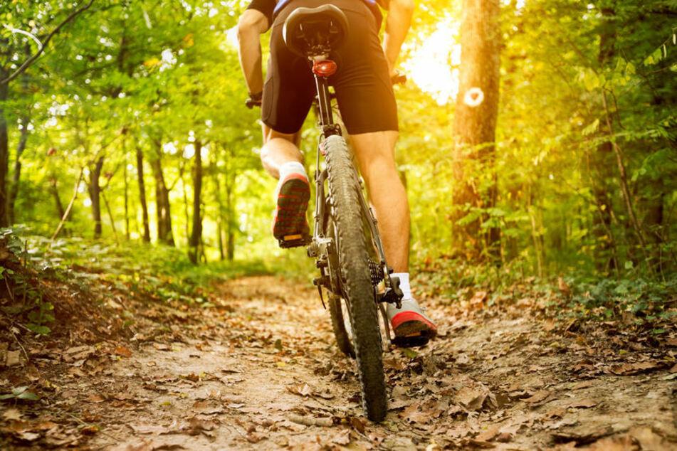 Rückansicht eines Mountainbike-Fahrers (Symbolfoto).